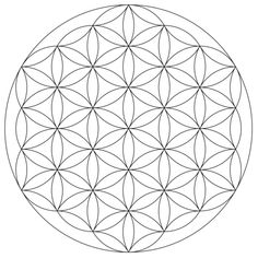 Flower of Life Mandala Coloring page