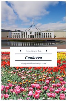 """Our """"bush capital"""" of Canberra is often overlooked in favour of Sydney or Melbourne. Yet there are so many great things to do and so many cheap activities in Canberra. We lived in Canberra for nearly 20 years. Living only three hours away, we are still frequent visitors and share some of our favourite things to do in Canberra without breaking the budget. #canberra #australia #australiantravel #cheapattractions"""