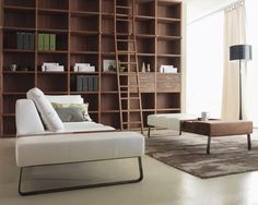 Media Room Bookcases Design, Pictures, Remodel, Decor and Ideas - page 2