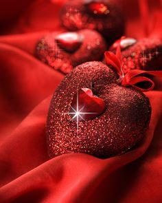 Google Afbeeldingen resultaat voor http://panageries.com/wp-content/uploads/2012/02/LoveThatRed.jpg