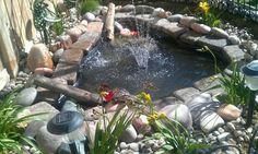 270 Gallon Preformed Pond Key Largo At Menards Duck World Pinterest Key Largo Ponds And