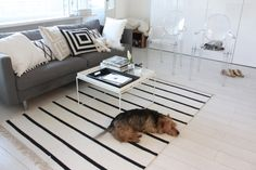 Homevialaura | living room | striped carpet | Hay Tray Table | Kartell Ghost chairs | dog friends