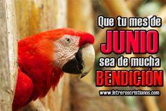 Que-tu-mes-de-Junio-sea