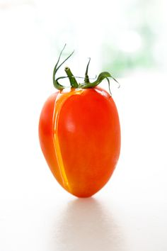 TOMATE Y ACEITE
