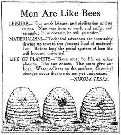 Men are like bees... -Nikola Tesla