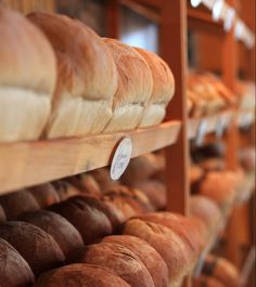 Plus gourmand   Tourisme Alma Lac-Saint-Jean Lac Saint Jean, Table D Hote, Canadian Travel, C'est Bon, Bread, Food, Vegetarian Menu, Fresh Pasta, Grilling