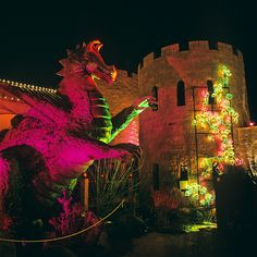 The Dragon and Castle @River of Lights @Albuquerque Biopark during Christmas, Love it!