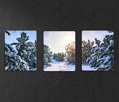 Chromaluxe Multi panel Snow