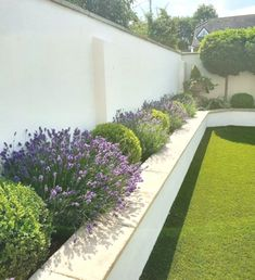 <br> Simple And Modern Garden Design, Modern landscape design is an expansion and refinement of mid-century modern or Modernist garden design, hearkening back to the or earlier when res Back Garden Design, Backyard Garden Design, Small Backyard Landscaping, Diy Garden, Modern Landscaping, Modern Planting, Landscaping Ideas, House Garden Design, Modern Backyard