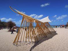 mark emery introduces bamboo waves to australian coastline