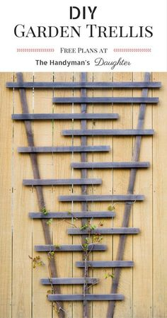 Build your own garden trellis for less than $10! This DIY garden trellis is perfect for climbing vines. Get your free plans at The Handyman's Daughter! | DIY fence trellis | gardening