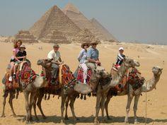 camel riding giza - Google Search