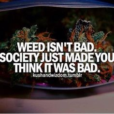 OCTOBER 4, 2015 / ADMIN We know a lot of you love our best weed memes of the week that we specifically pick for your enjoyment! We hope you share them amongst your friends and use them at your own ...
