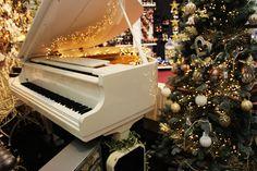 Christmas display at Squire's Badshot Lea