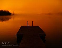 foggy morning by dzorma  sunrise fog morning golden calm peaceful estonia peace dreamy eesti tartu misty tranquil quiet foggy
