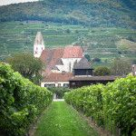 Along the Danube on 2 wheels: cycling in Austria's Wachau Valley