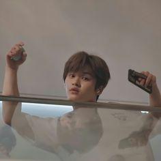 Minho, Fandom Kpop, I Know You Know, Lee Know Stray Kids, Kids Icon, Kid Memes, Cat Dad, Kids Wallpaper, Oui Oui