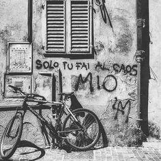 Graffiti Writing, Graffiti Art, Political Art, Wonder Quotes, Star Wall, Magic Art, Wonderwall, Wall Quotes, Vintage Pictures
