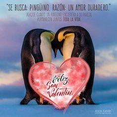 ¡Buenos dias! ¡Que viva el amor hoy y siempre! Os deseamos a tod@s un feliz #14deFebrero #SanValentin #DiadelosEnamorados  #FelizSanValentin #FelizMiercoles