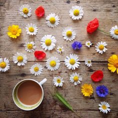 flowers and coffee - things organized neatly
