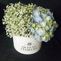 Queen Helene by Queens' Flowers, Riga