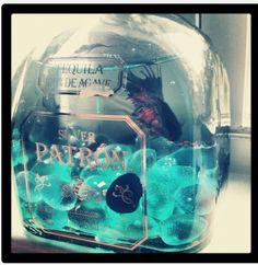 Costco size bottle?...  A mini aquarium inside a patron bottle! Amazing idea!!!