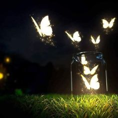How to Create a Fairy House or Fairy Garden in Your Background Butterfly Wallpaper, Butterfly Art, Hd Wallpaper, Desktop Wallpapers, Wallpaper For Laptop, Butterfly Kisses, Colorful Wallpaper, Nature Wallpaper, Forest Tumblr