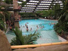 Zwembad Kempervennen in Westerhoven (Eindhoven)  Kempervennen Aqua Mundo   Center Parcs  Vakantie met subtropisch zwembad