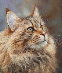 Cat Art - Maine Coon Cat by David Stribbling