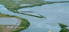 Delta del Po: natura, sport e piscina a Rosolina Mare