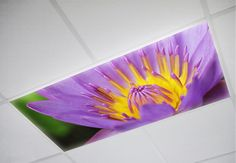 Decorative fluorescent light covers for your home or office. Brilliant flower light cover by Octo Lights.