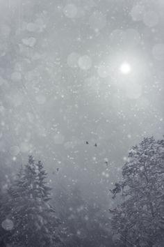 A Cold Storm by David et Myrtille  dpcom.fr, via 500px