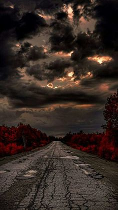 Let's take a ride                                                                                                                                                                                 More Pont, Country Roads, Sunset, Landscape, Gothic Beauty, Blood, Places To Go, Pathways, Sunsets