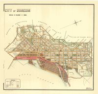 This is a really old and really cool historical map of Dunedin from the year 1909.