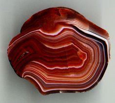 Lake Superior Agate | Lake Superior agate with the typical brown/red and whiteshades and ...