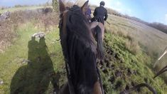 February Hunting was with the Galway Blazers again today. Absolutely diabolical conditions, the weather couldn't make up its mind what to do, and . Cross Country Jumps, Mid Term, Beach Rides, Show Jumping, Day Off, Equestrian, Ireland, Blazers, Hunting
