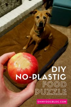 DIY Plastic-Free Food Puzzle for Dogs: Healthy, allergy-friendly, and only two ingredients you probably a Brain Games For Dogs, Dog Games, Dog Boredom, Dog Enrichment, Diy Dog Toys, Diy Puzzle Toys For Dogs, Homemade Dog Toys, Dog Puzzles, Dog Activities