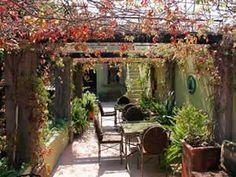 patios mexicanos fotos - Buscar con Google Ficus, Porches, Aquarium, Google, San Miguel De Allende, Gardens, Houses, Front Porches, Goldfish Bowl