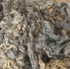 Wensleydale Locks Washed Wool Fleece Spinning and Felting Fiber Natural Grey Silver by HermanHillsFarm on Etsy