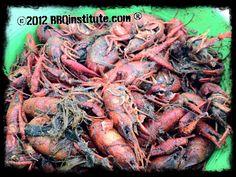 Forget the Katy Crawdad festival.  Mud bugs at Good Ole Boys in Katy Texas. Yum!!!