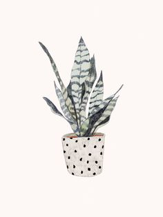 – Home Decor : Dibujé una Plantita (agosto Daniela Dahf Henriquez. Vases – Home Decor : Dibujé una Plantita (agosto Daniela Dahf Henriquez -Read More – -Vases – Home Decor : Dibujé una Plantita (agosto Daniela Dahf Henriquez -Read More – - Art And Illustration, Plant Sketches, Illustration Botanique, Drawn Art, Plant Drawing, Plant Painting, Motif Floral, Grafik Design, Art Design
