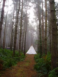 These are stunning!  16' Cheyenne Style tipi / teepee Hand Made. $827.00, via Etsy.