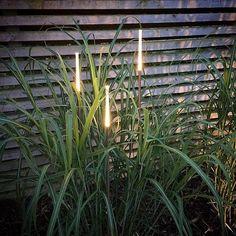 När mörker och kyla tränger på är det en riktig mysfaktor med smart och snygg belysning i trägården. Praktiskt så klart så man ser vart man ska gå och inte snavar men med strategiskt placerade lampor får trädgården en helt ny dimension med vackra fokuspunkter och spännande skuggor. Med våra lättmonterade och energisnåla LED Plug&Play-lösningar kan du enkelt bygga den ljusbild du vill ha i trädgården.   #plugandplay #trädgårdsbelysning #belysning #wexthuset #växtbelysning #utebelysning