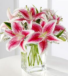 FTD Pink Lily Bouquet - DELUXE  Price: 47.90    This is a sweet bouquet that expresses your love and affection. Fragrant pink Stargazer lilies are accented with pink statice and arranged in a clear glass vase. Stargazer Bouquet, Lily Bouquet, Stargazer Lilies, Flower Bouquets, Calla Lily, Flowers For You, Pink Flowers, Beautiful Flowers, Cut Flowers