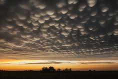 Nubes mammatus cubren el cielo al amanecer en Nebraska. Fotografía de Mike Hollingshead