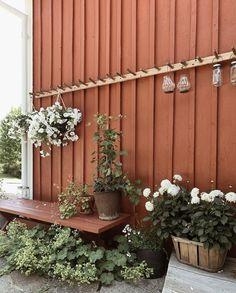Backyard Plan, Backyard Landscaping, Farm Gardens, Outdoor Gardens, Front Porch Landscape, Backyard Creations, Balcony Plants, Garden Studio, Dream Garden