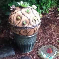 My gardening project on a rainy day