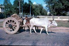 Street scene of Dhaka (1960s) http://ift.tt/2x4akzk