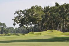 Bluffton, SC - Colleton River Plantation Club - Pete Dye Course