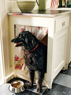 Create a cozy closed-in space for your pooch this year! Push the crate under a table in a kitchen nook or in the basement--or build a little pet hideaway--and it won't fight with your decor! http://www.bhg.com/pets/care/pet-health/pet-friendly-homes/?socsrc=bhgpin010115petden&page=3